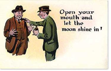 Moonshinein
